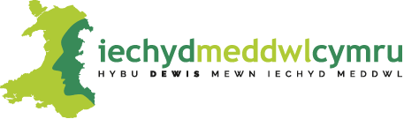 Metal Health Wales - logo